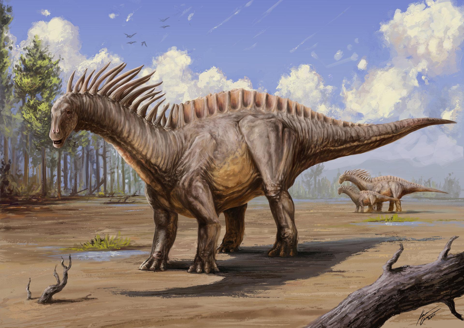 Karel Cettl Amargasaurus Cazaui