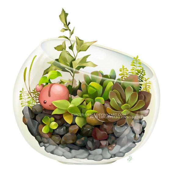 Jia ying ong terrarium series2