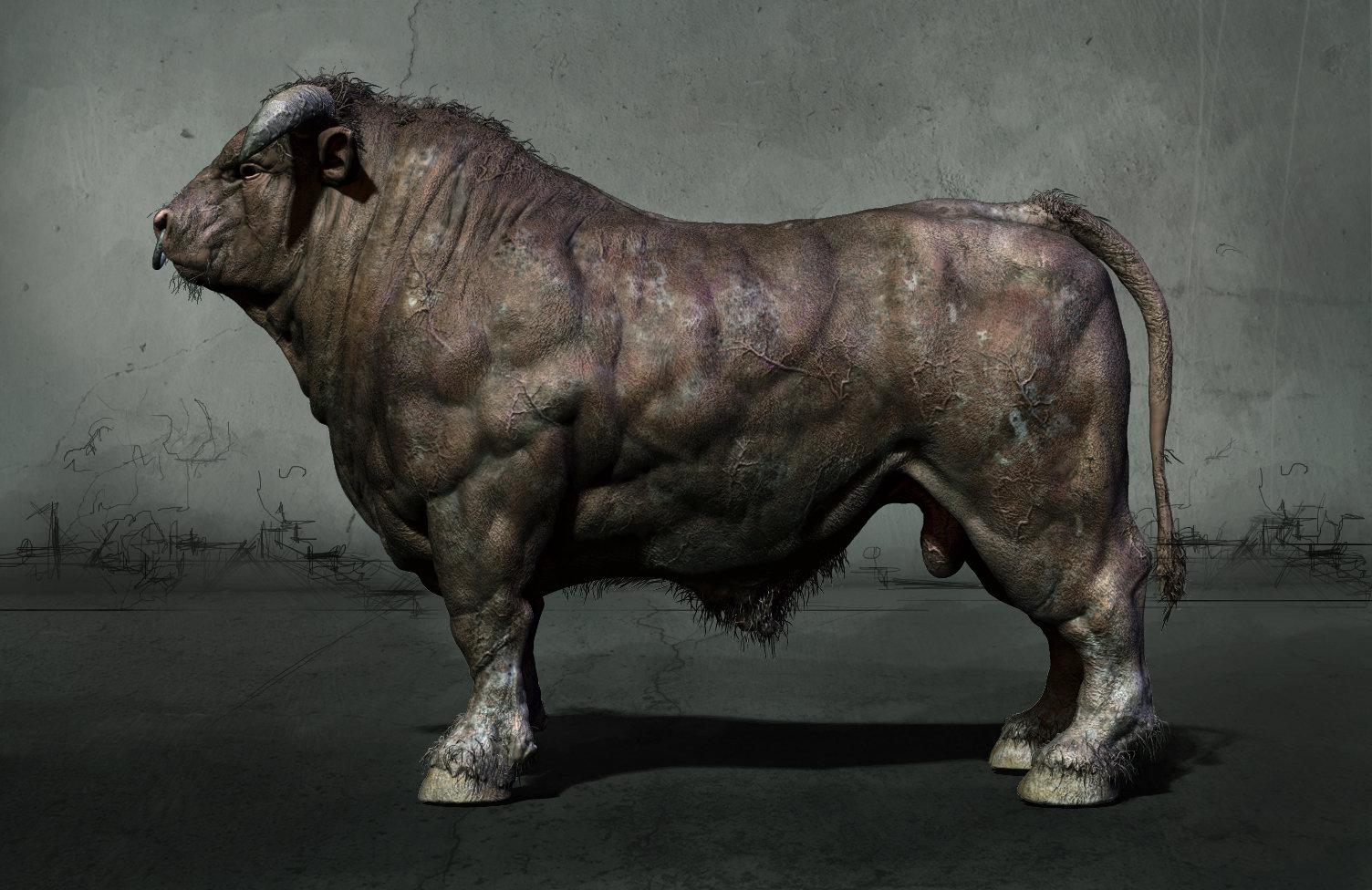 ArtStation - Anatomy study - Bull, Daniel Midholt