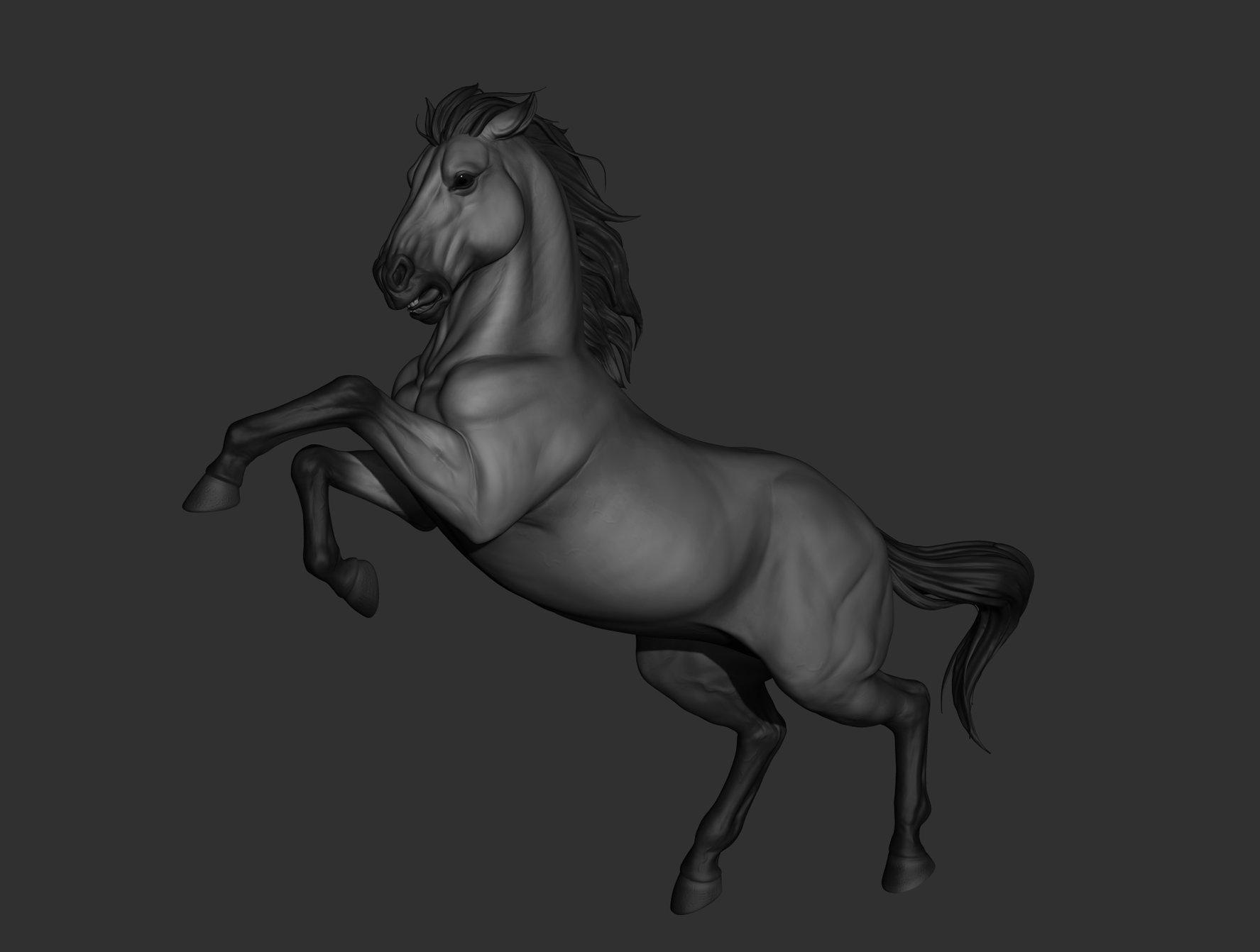 Krystal sae eua horse02