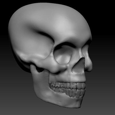Rudy harrelson ii skull sculpt01