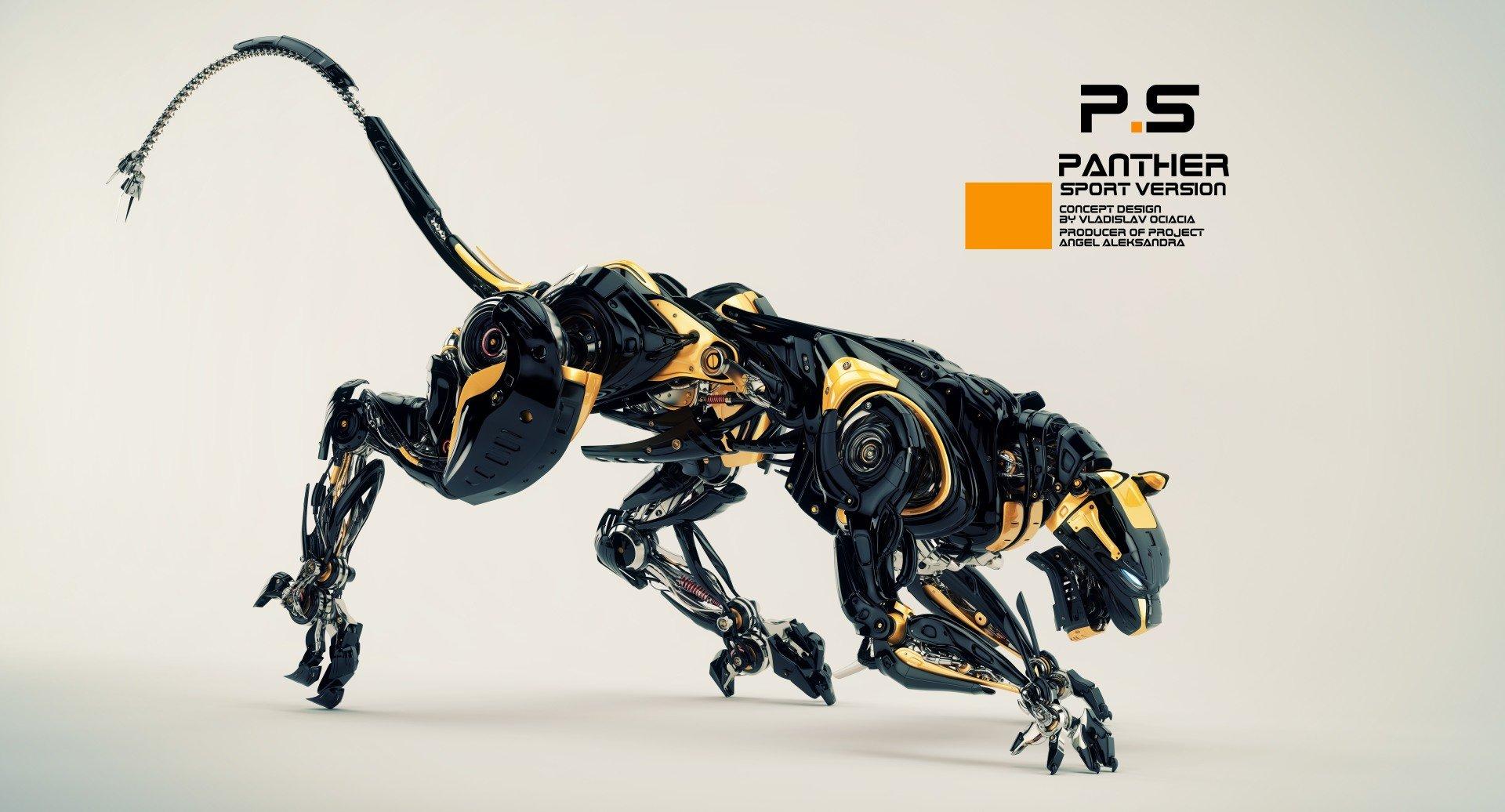 Vladislav ociacia robotic panther 6