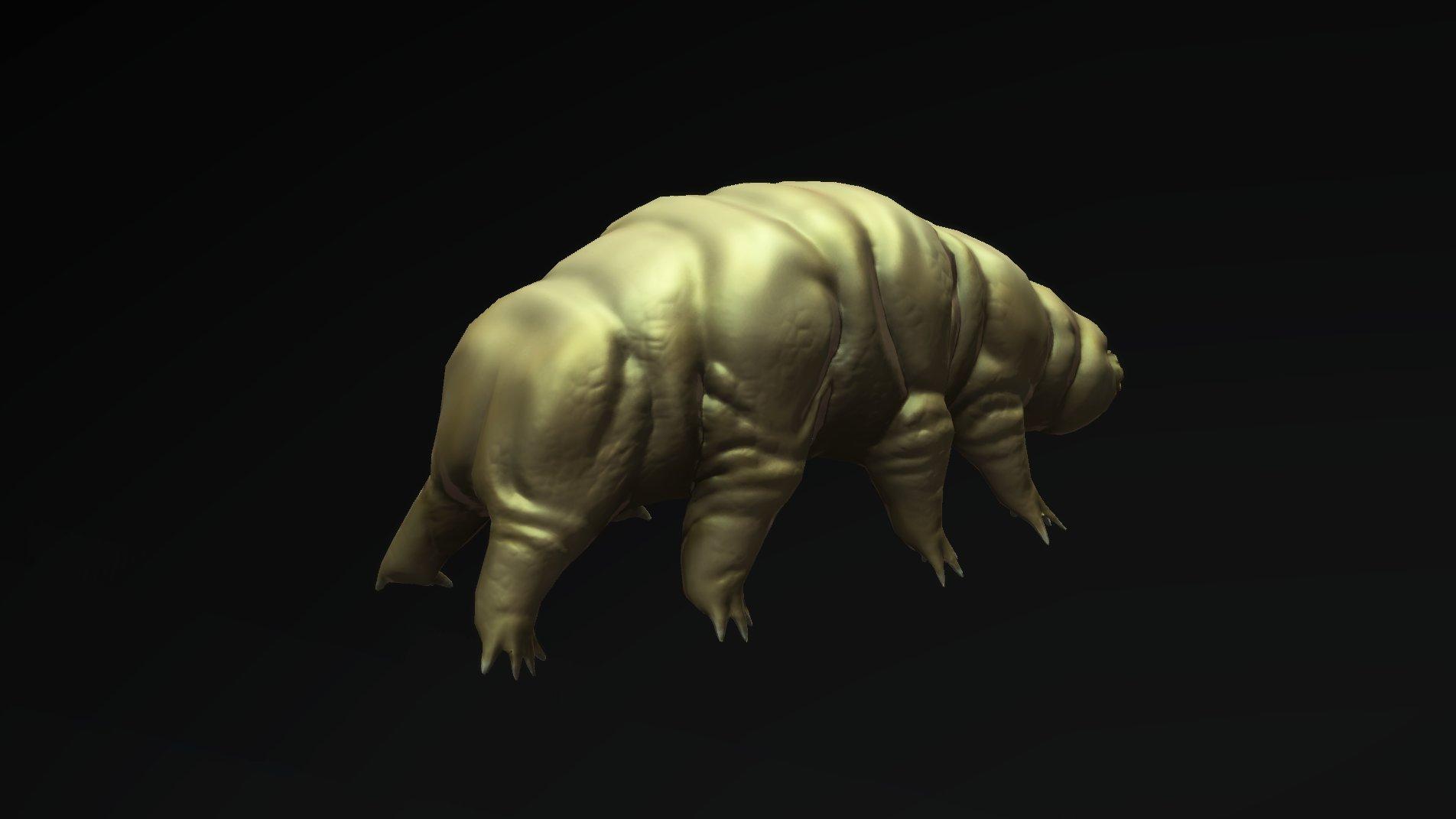 Andrew navratil tardigrade 03