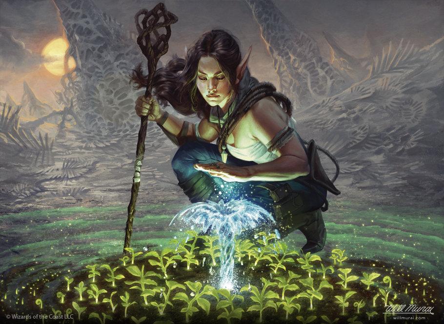 Will murai lifespring druid mtg bfz willmurai
