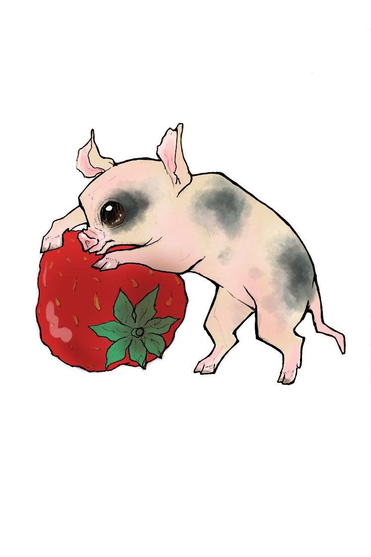 Gretchen puddicombe pig color