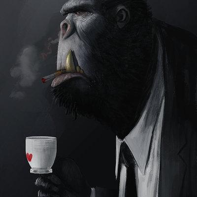Saad irfan gorilla