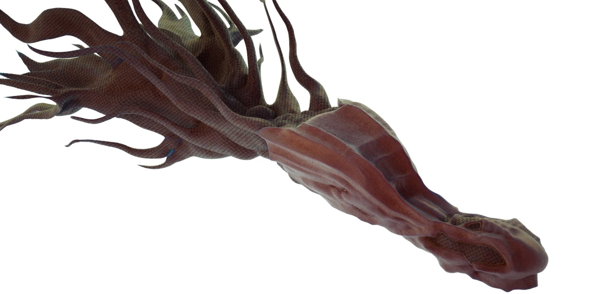 Kresimir jelusic fishy9
