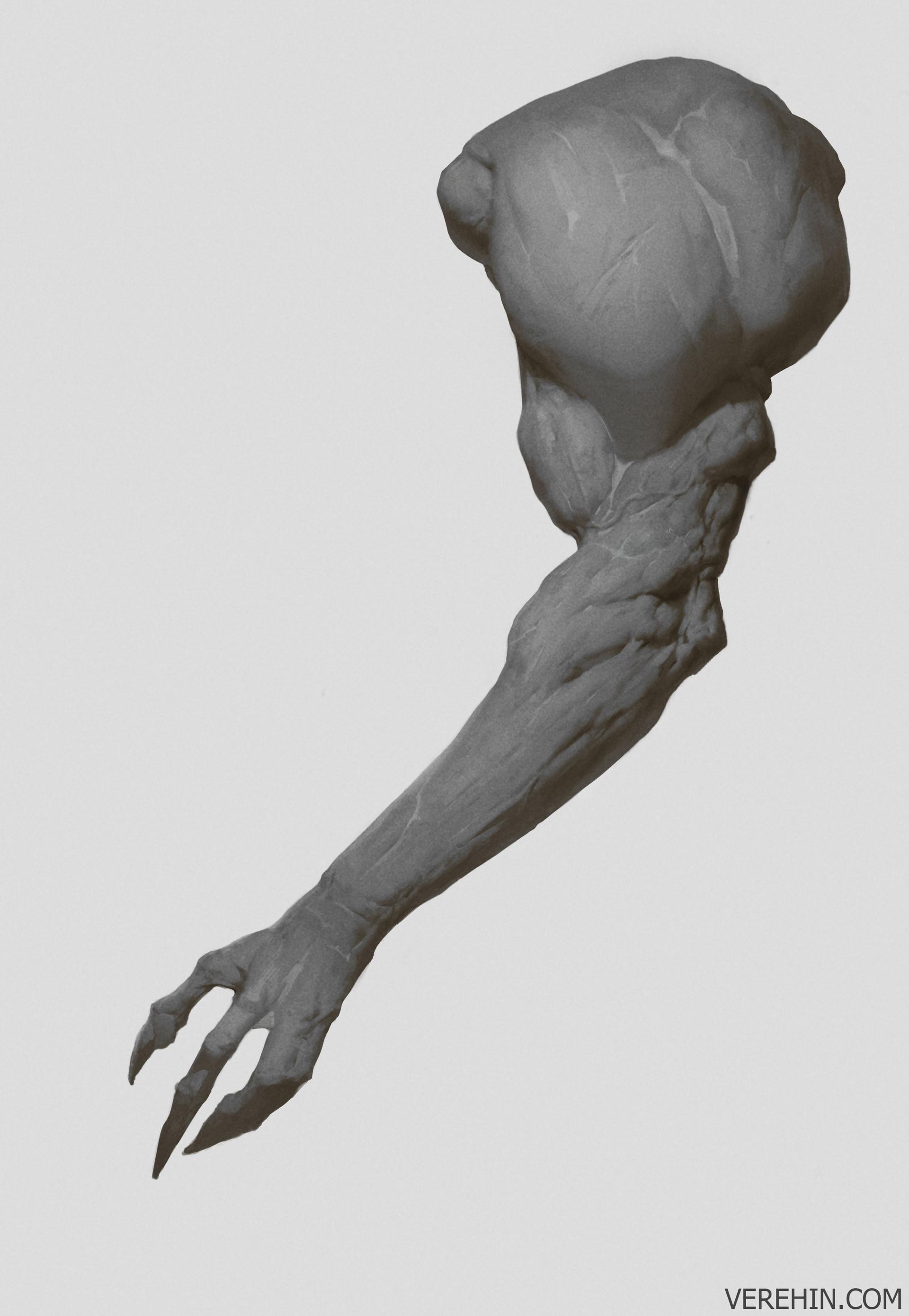 Maxim verehin hand 1