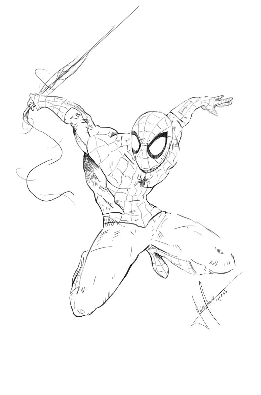 Marcos mansur spider
