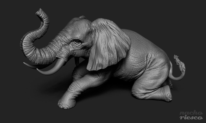 Nacho riesco gostanza elephant3d 4