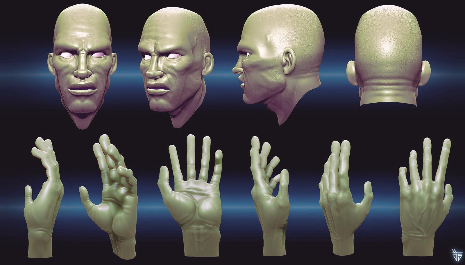 Jose samaniego 3d anatomy