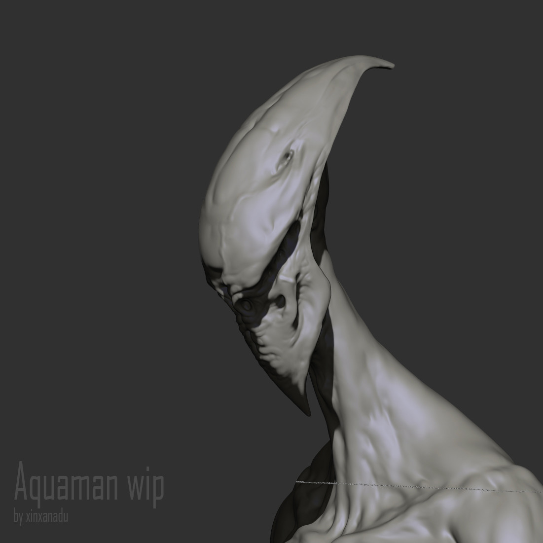 Xin wang aquaman test02