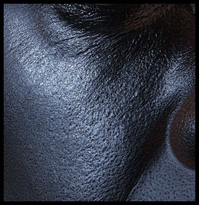 Ljabli salim closeup spec reflection
