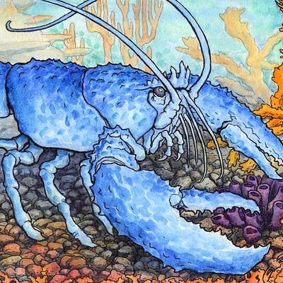 Patrick weck lobster king web version