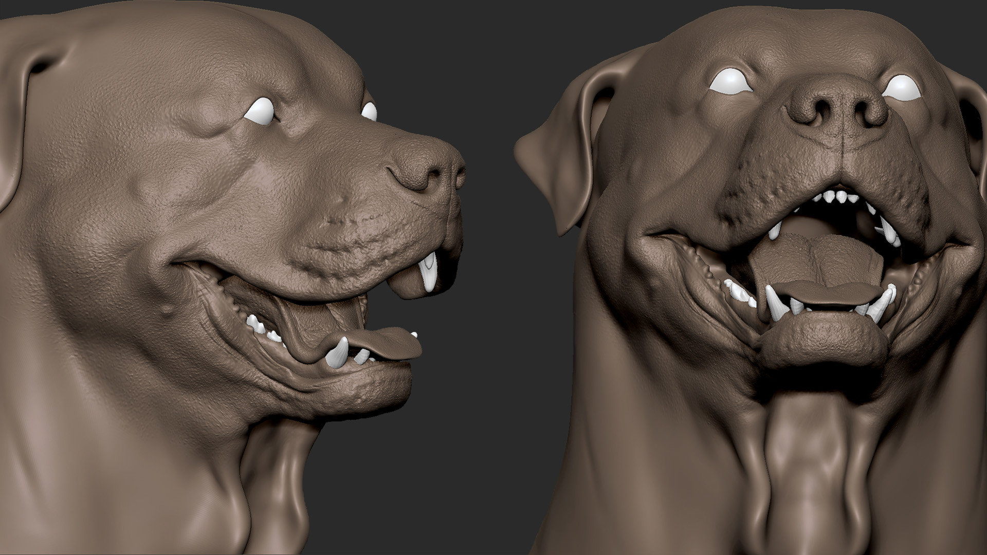 Mike poretti sculpt rotty