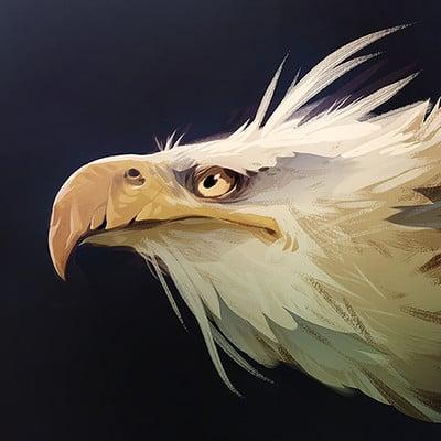 Nicola saviori eagle