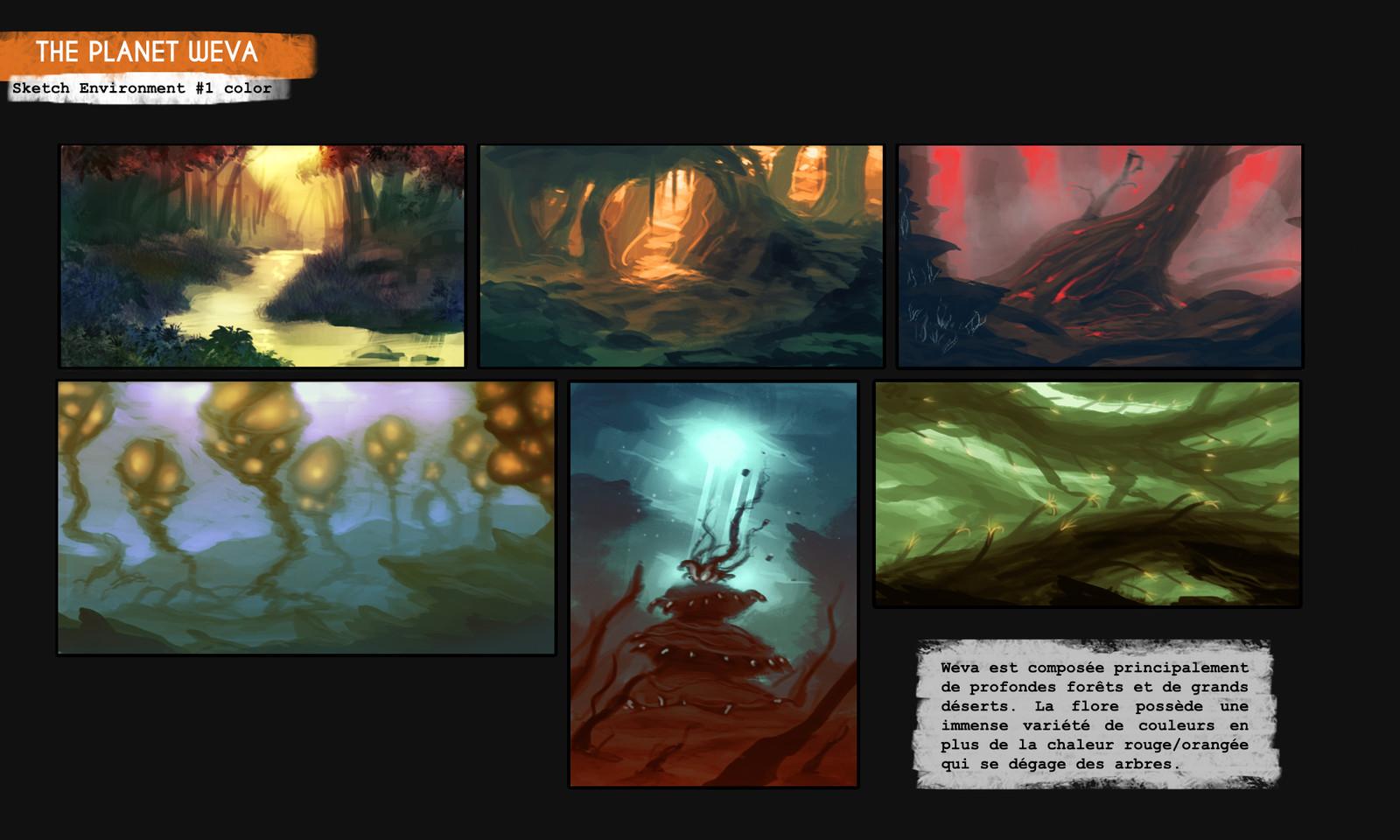 Thumbnail Environment Weva