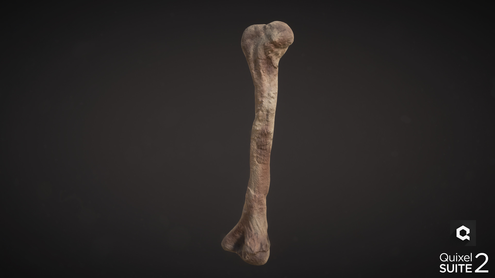Conor scott bone with logo