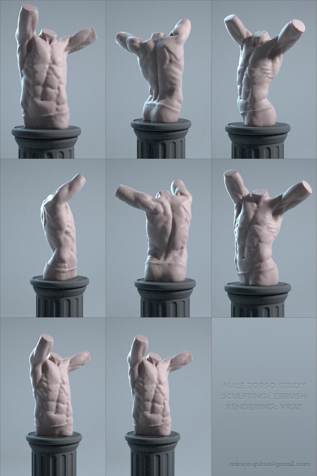 Adrian spitsa male torso sculpting
