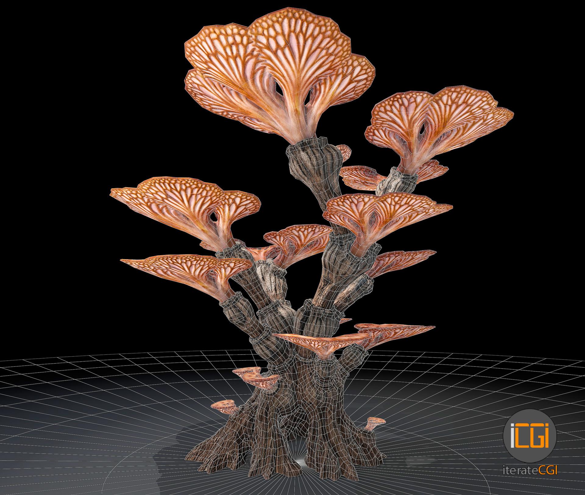 Johan de leenheer alien plants 4