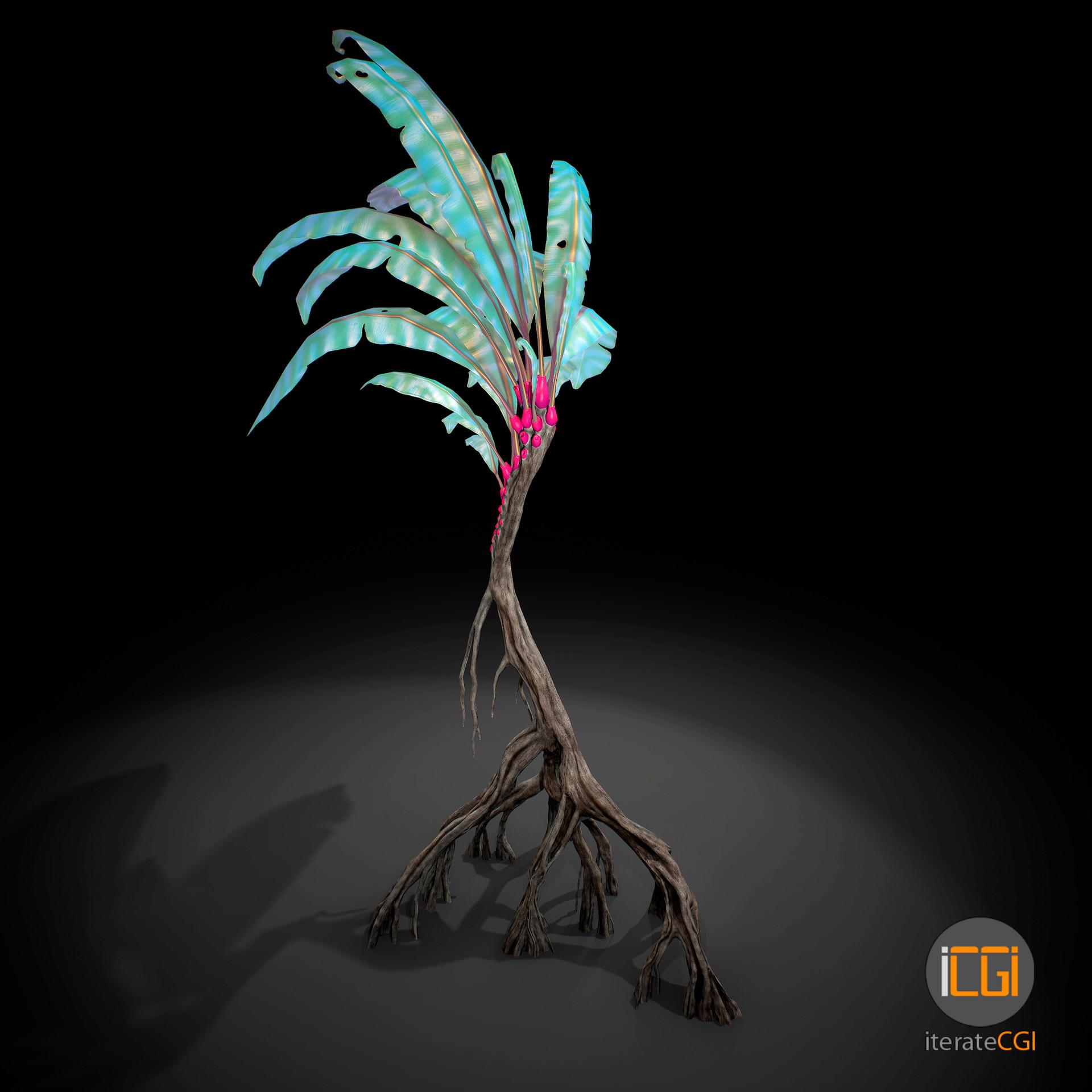 Johan de leenheer alien plant 12 11