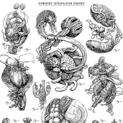 Stephen somers biomorphic poster