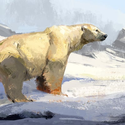 Jonathan kuo poler bear