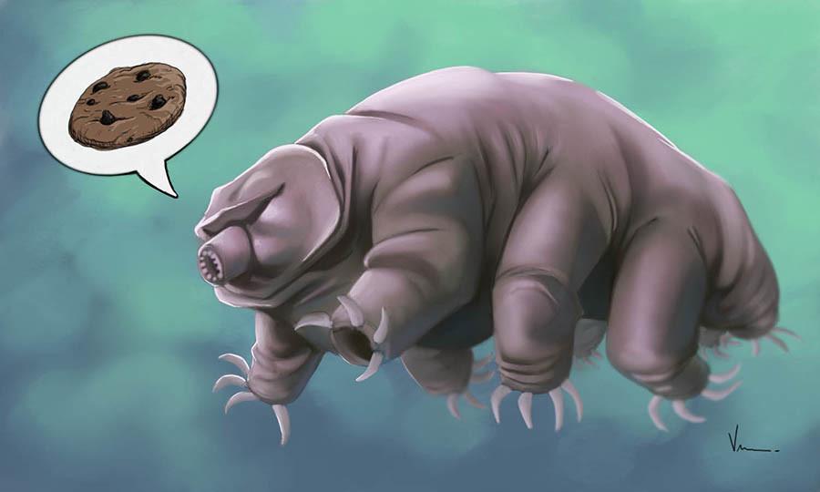 Tardigrade aka the Water Bear