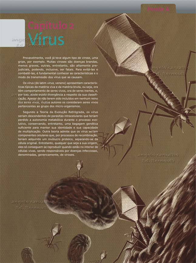 Angelo carvalho capa bio virus 2011