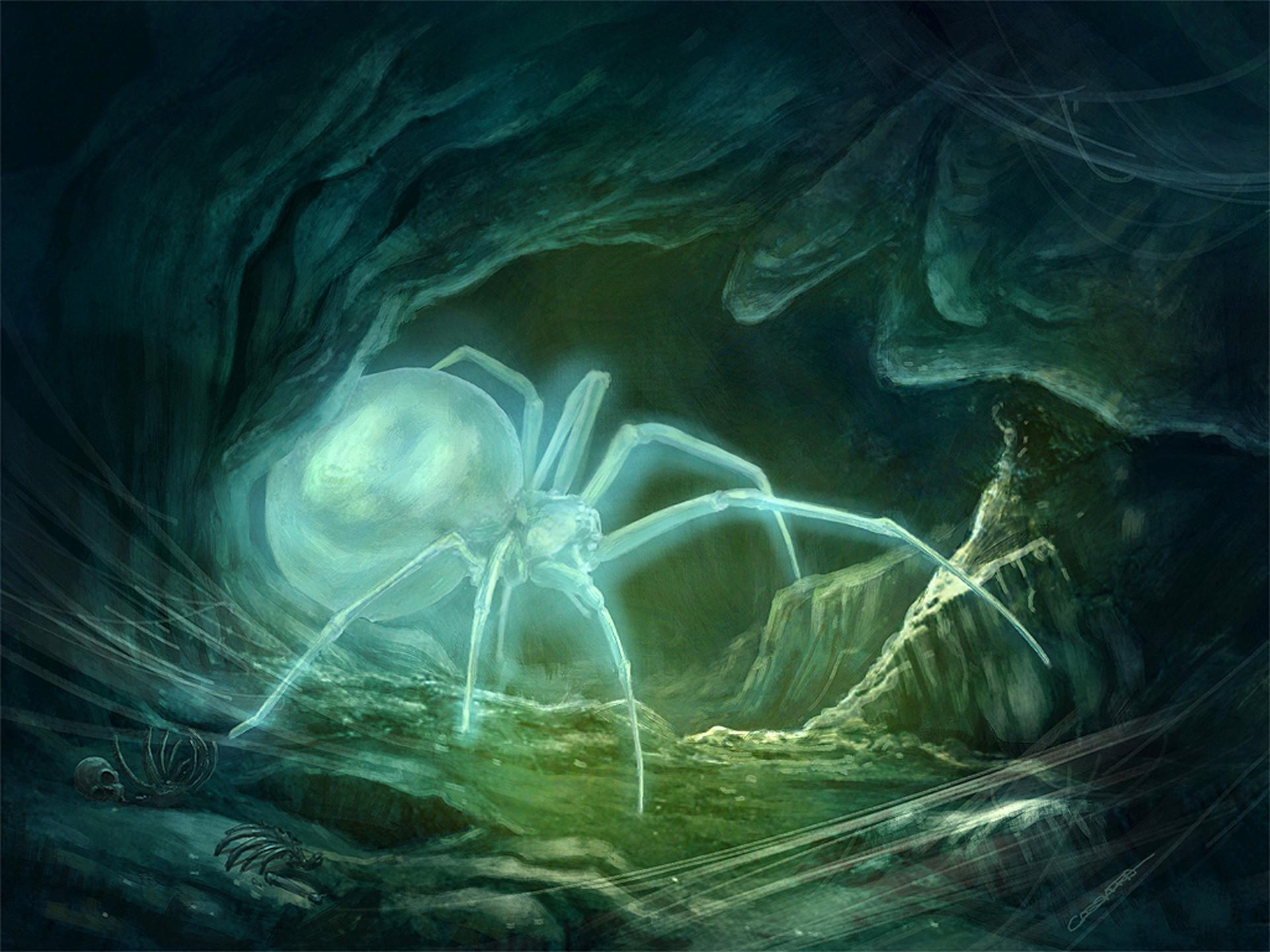 Gabriel cassata spectral spider hires