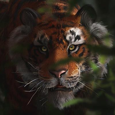 Katie hallaron tigern 1