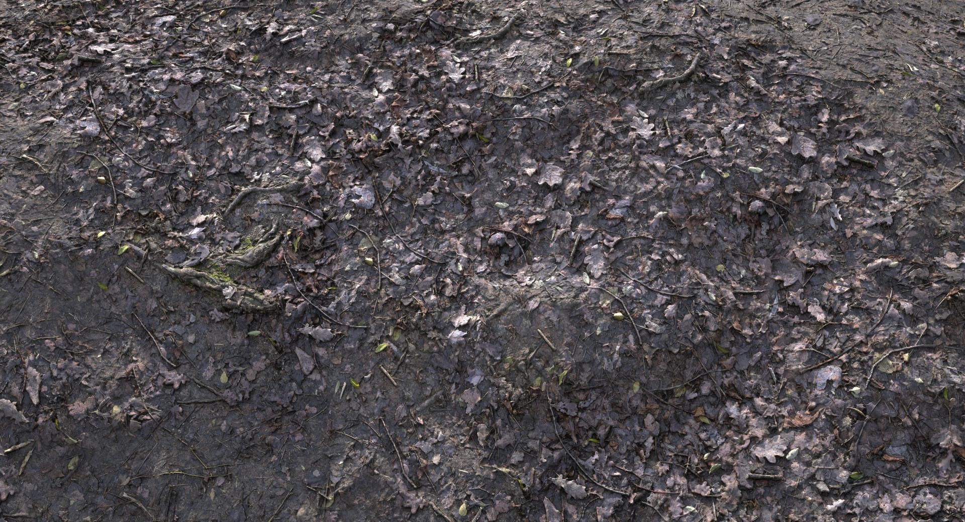 Schindelar 3d Rdtexture Muddy Forest Floor