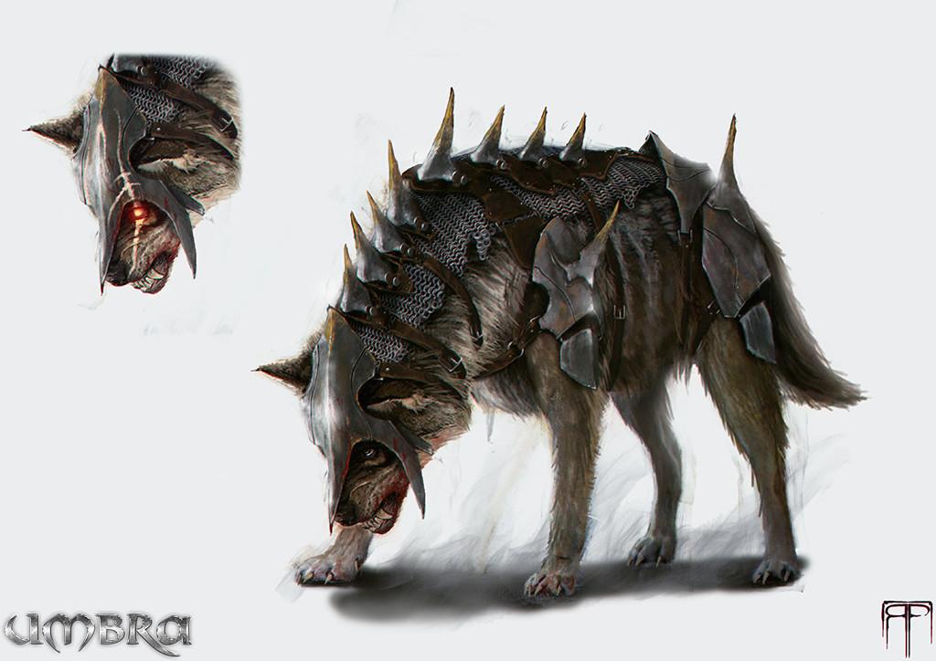 Romain pommier wolf