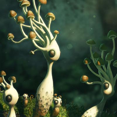 Andrew mcintosh mushrooms 005b