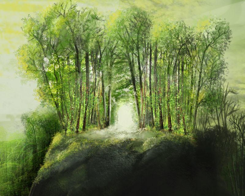 Forest Basic Land Illustration