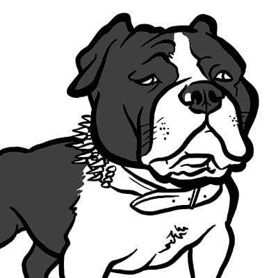 Steve rampton bulldog bw