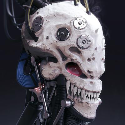 Mark van haitsma skull a sm