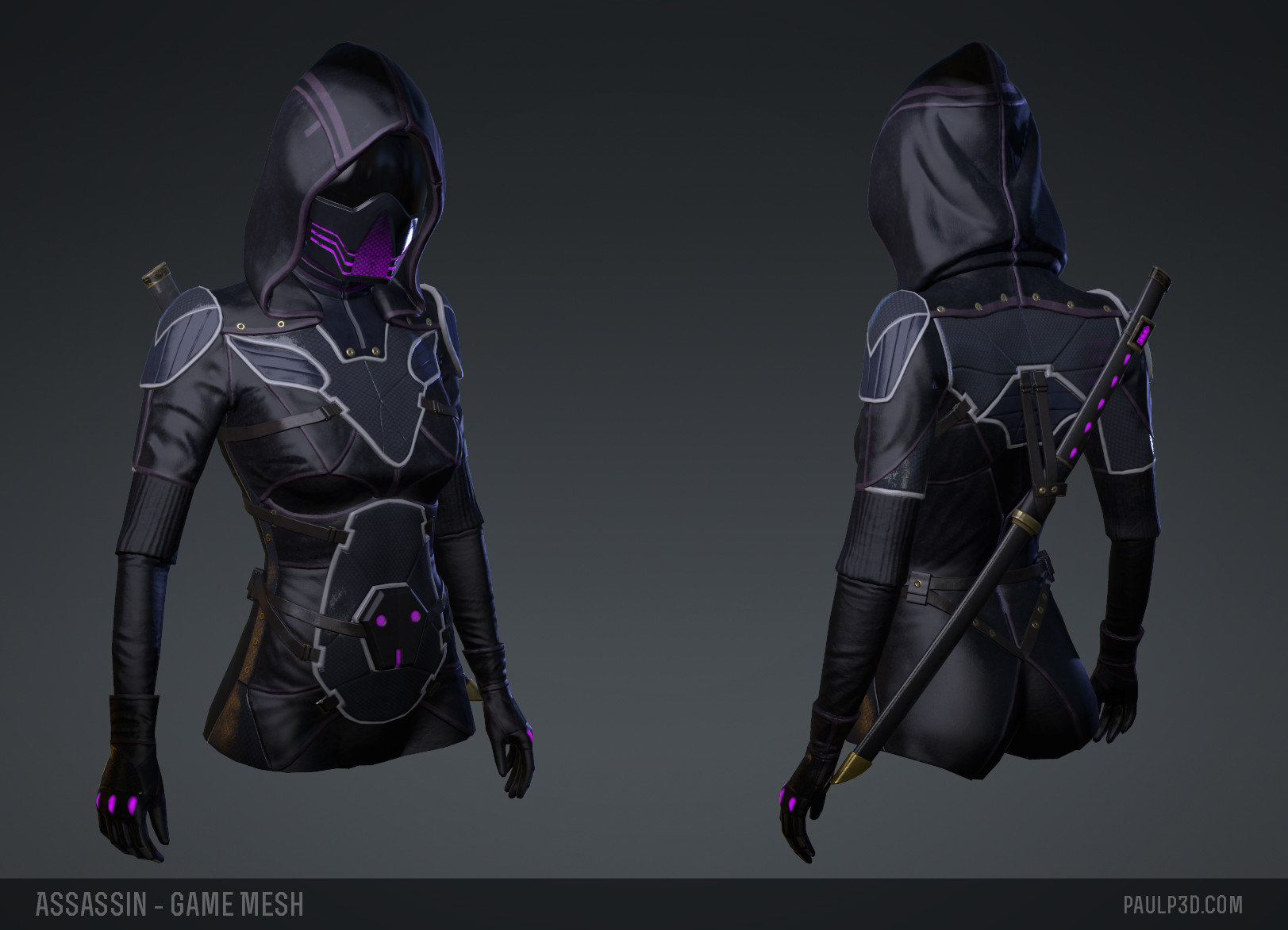 Paul packham assassin gamemesh