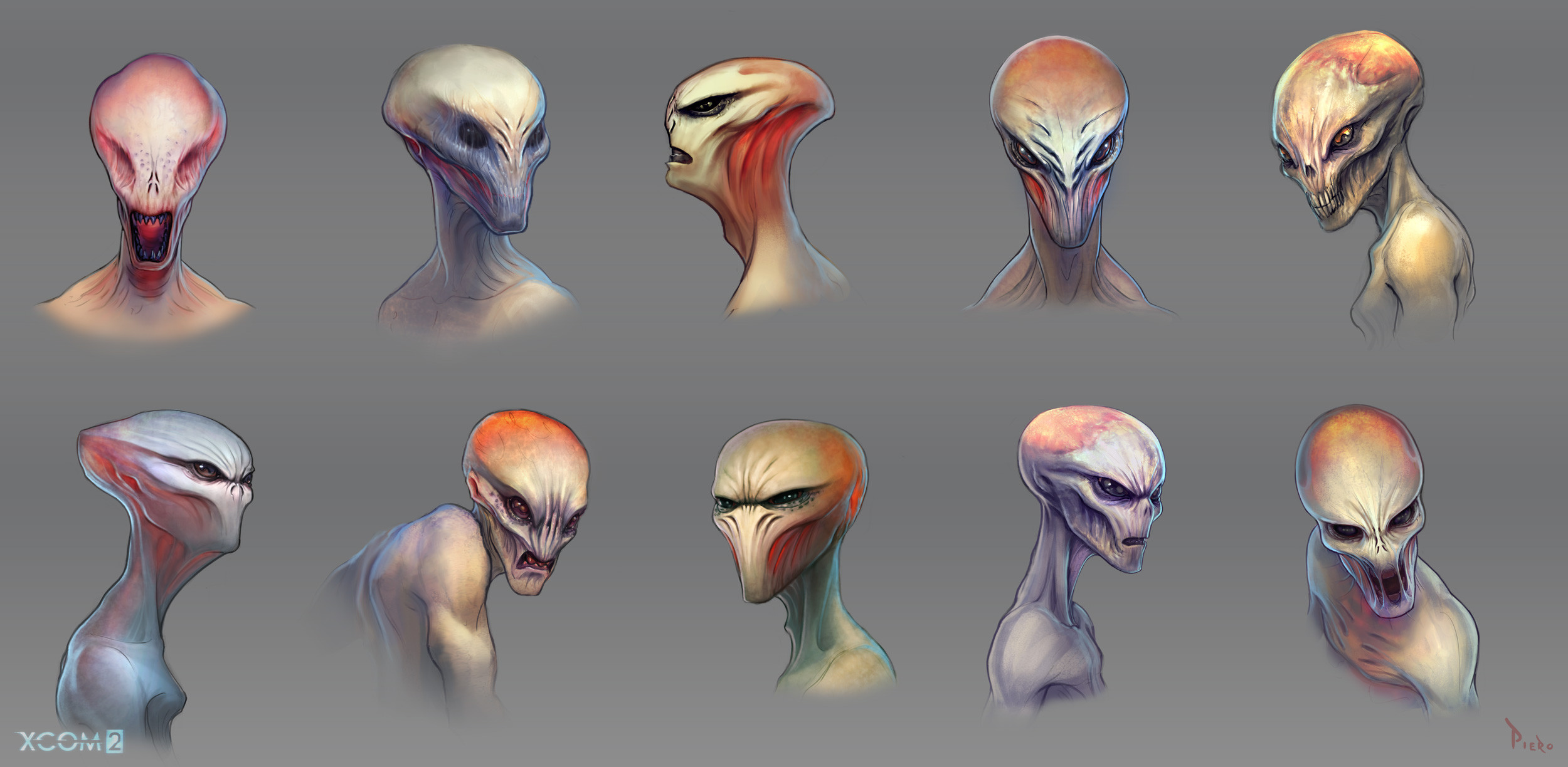 Head explorations