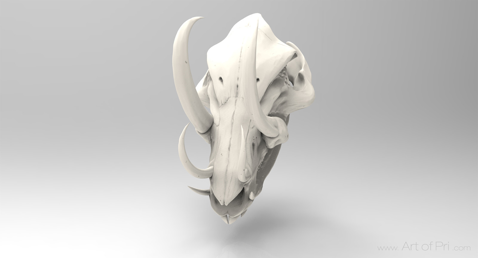 Priscilla firstenberg skull03