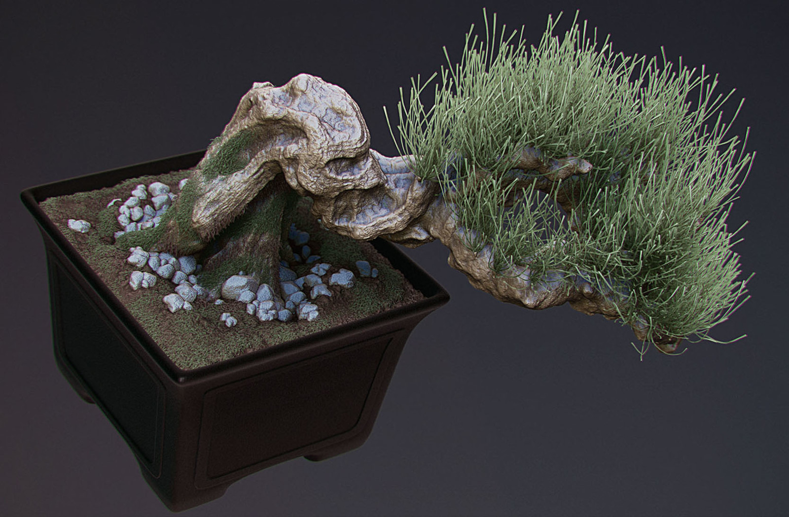 Bonzaï sculpt (2013)