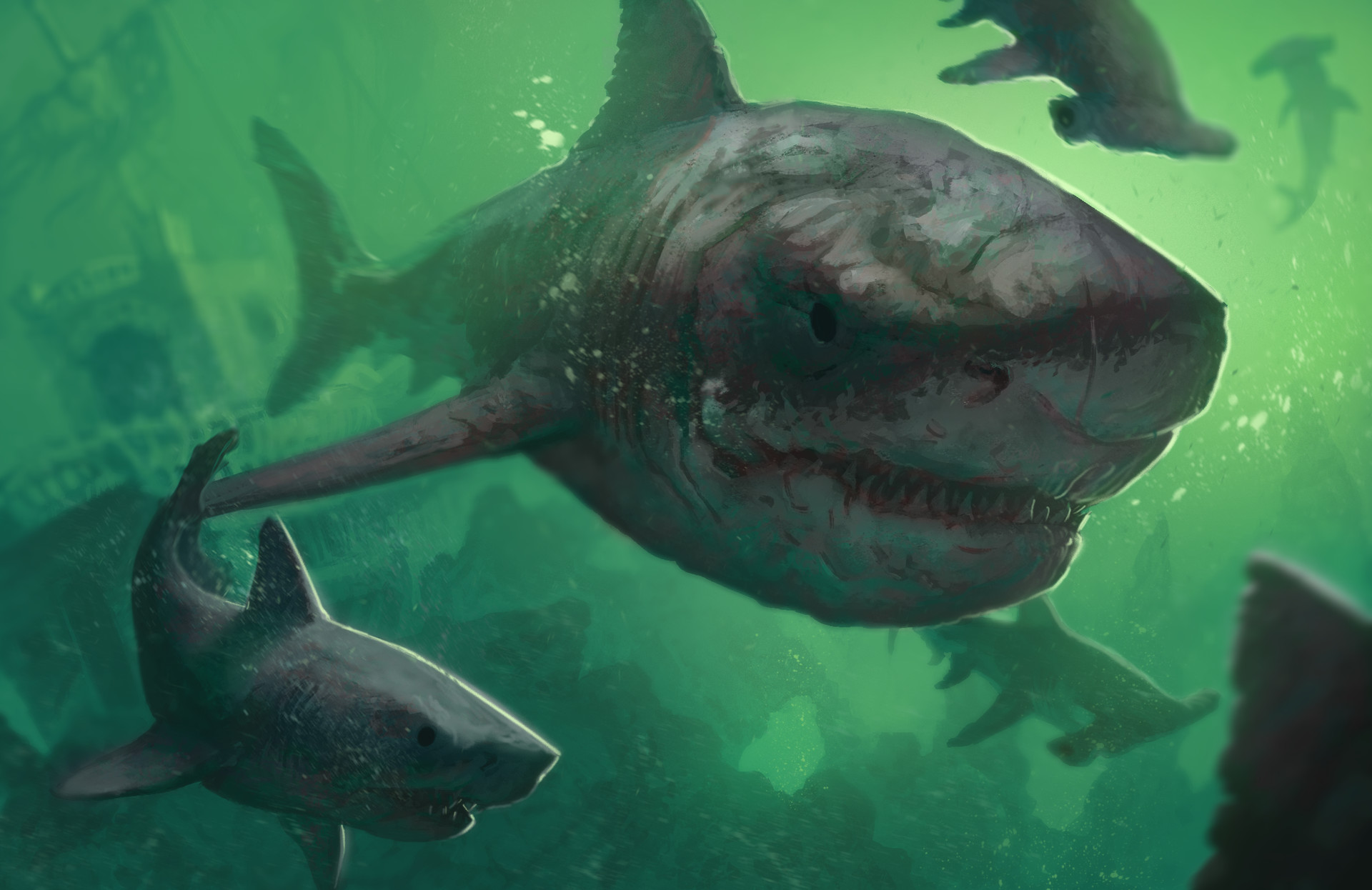 megalodon shark pictures - HD 1920×1246