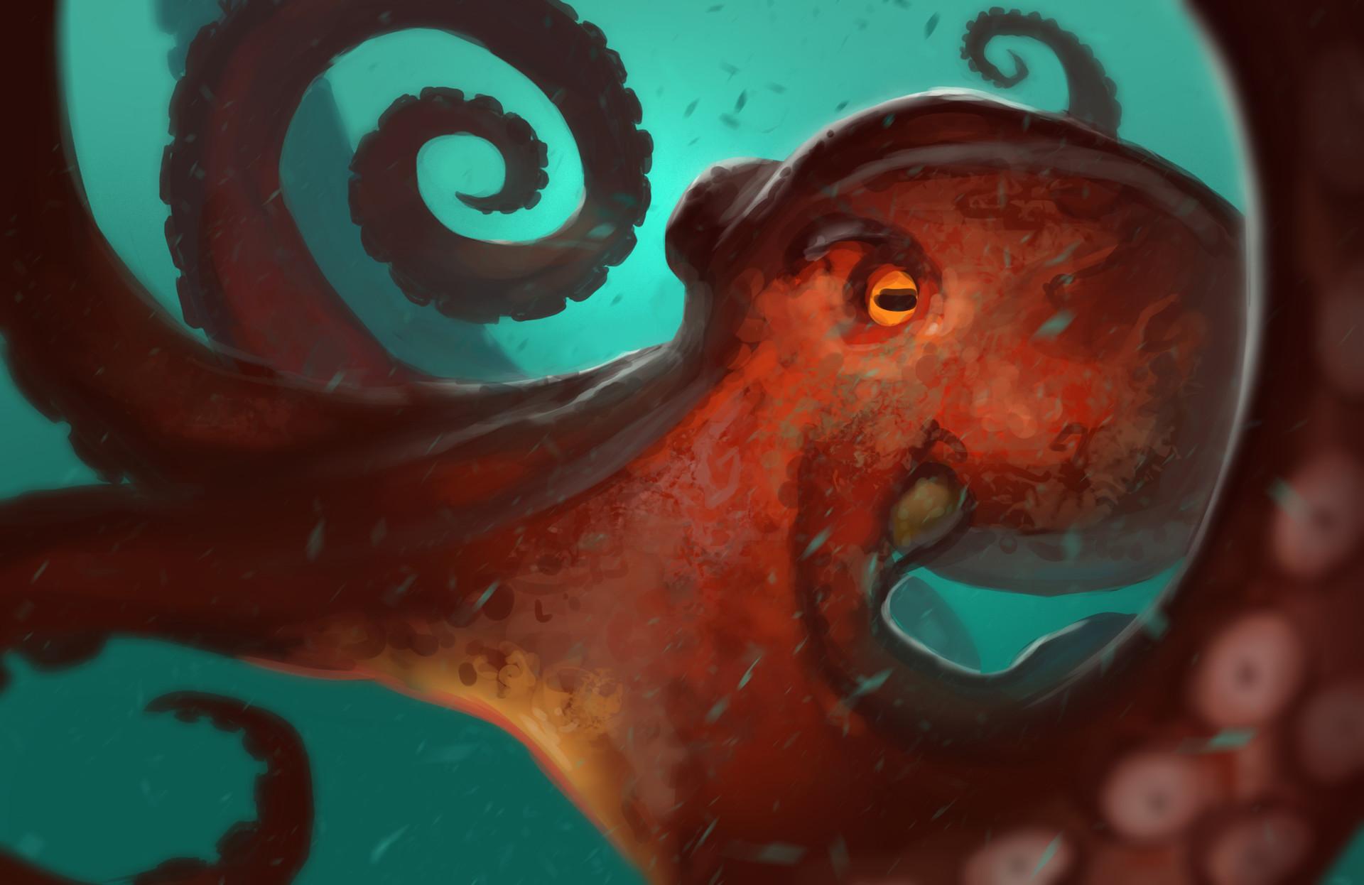 Gabriel ramos osc octopus