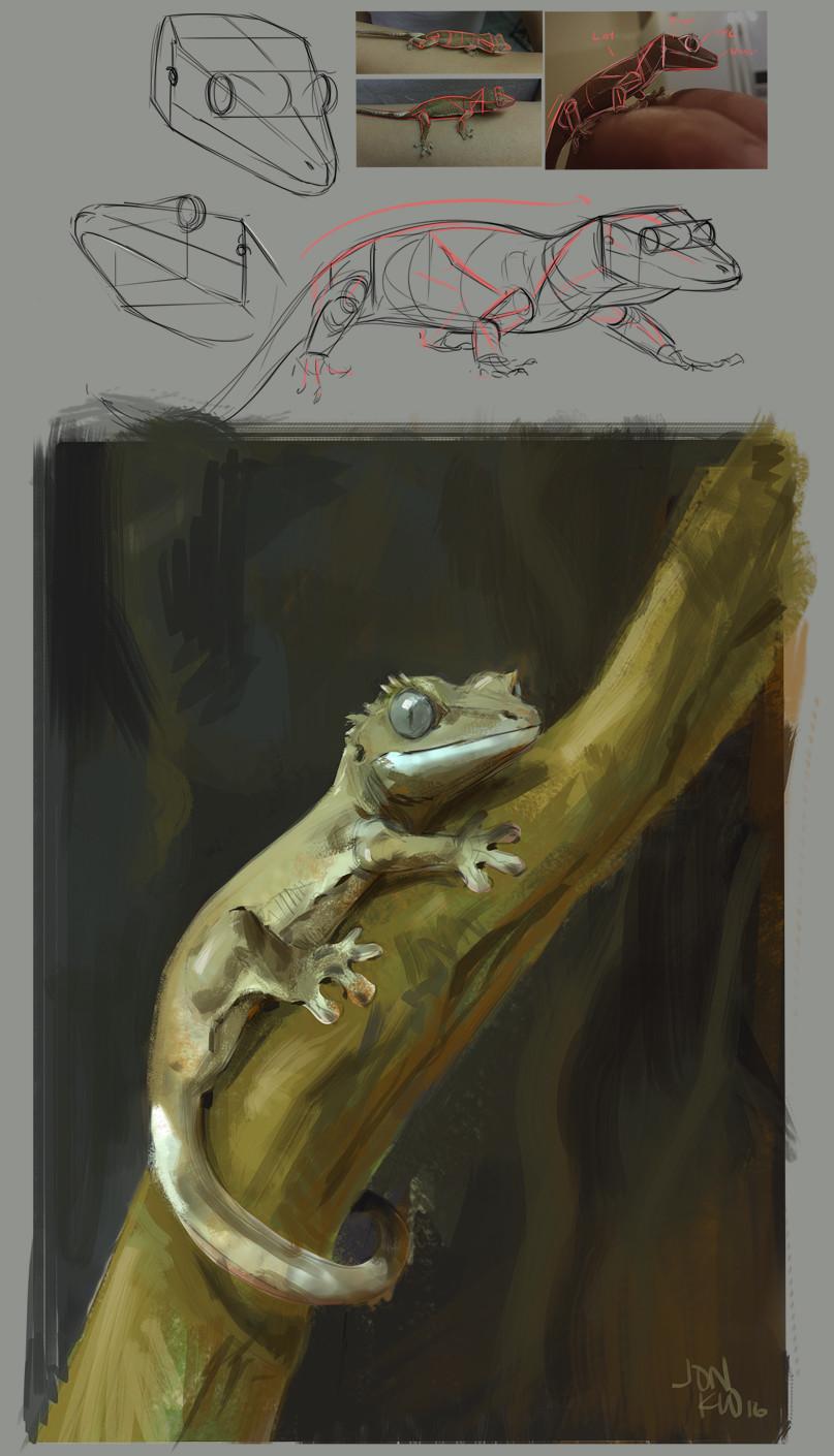 Jonathan kuo gecko