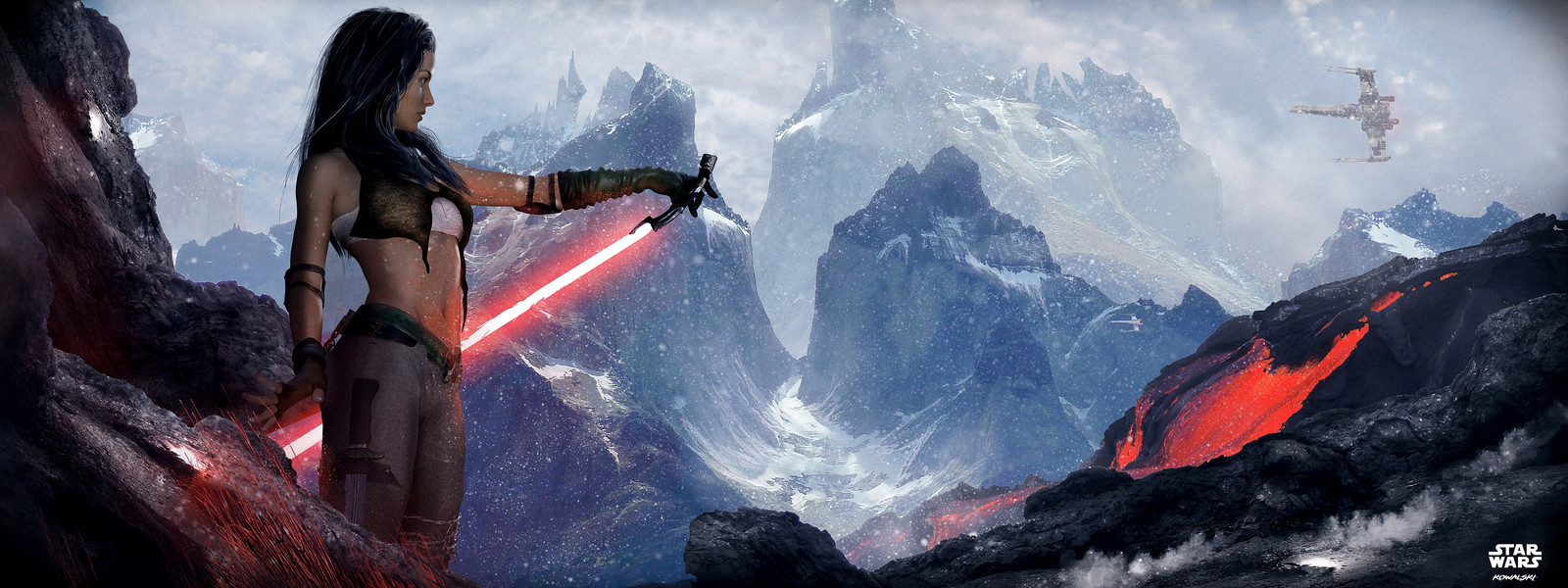 Star Wars - The Last Order
