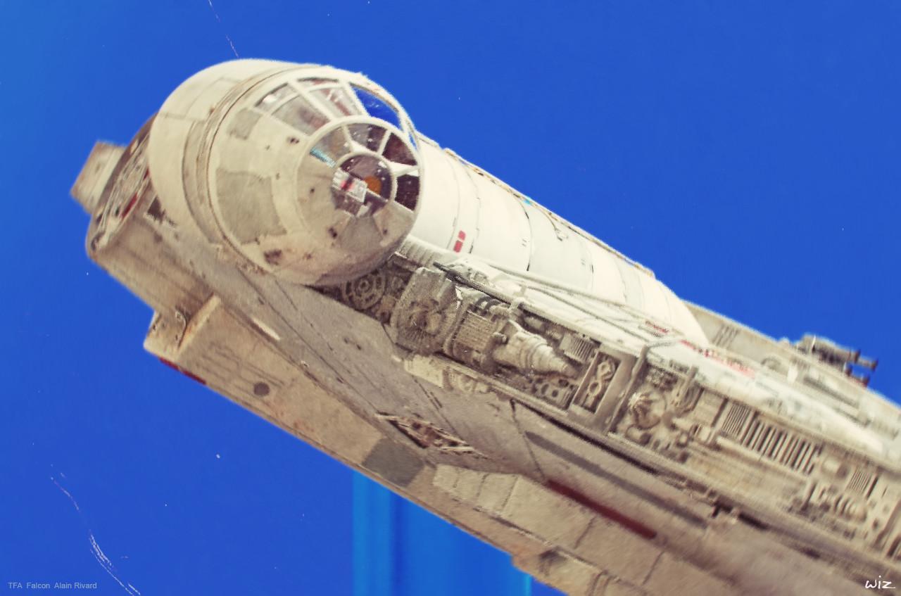 Paul wiz johnson falcon closeup