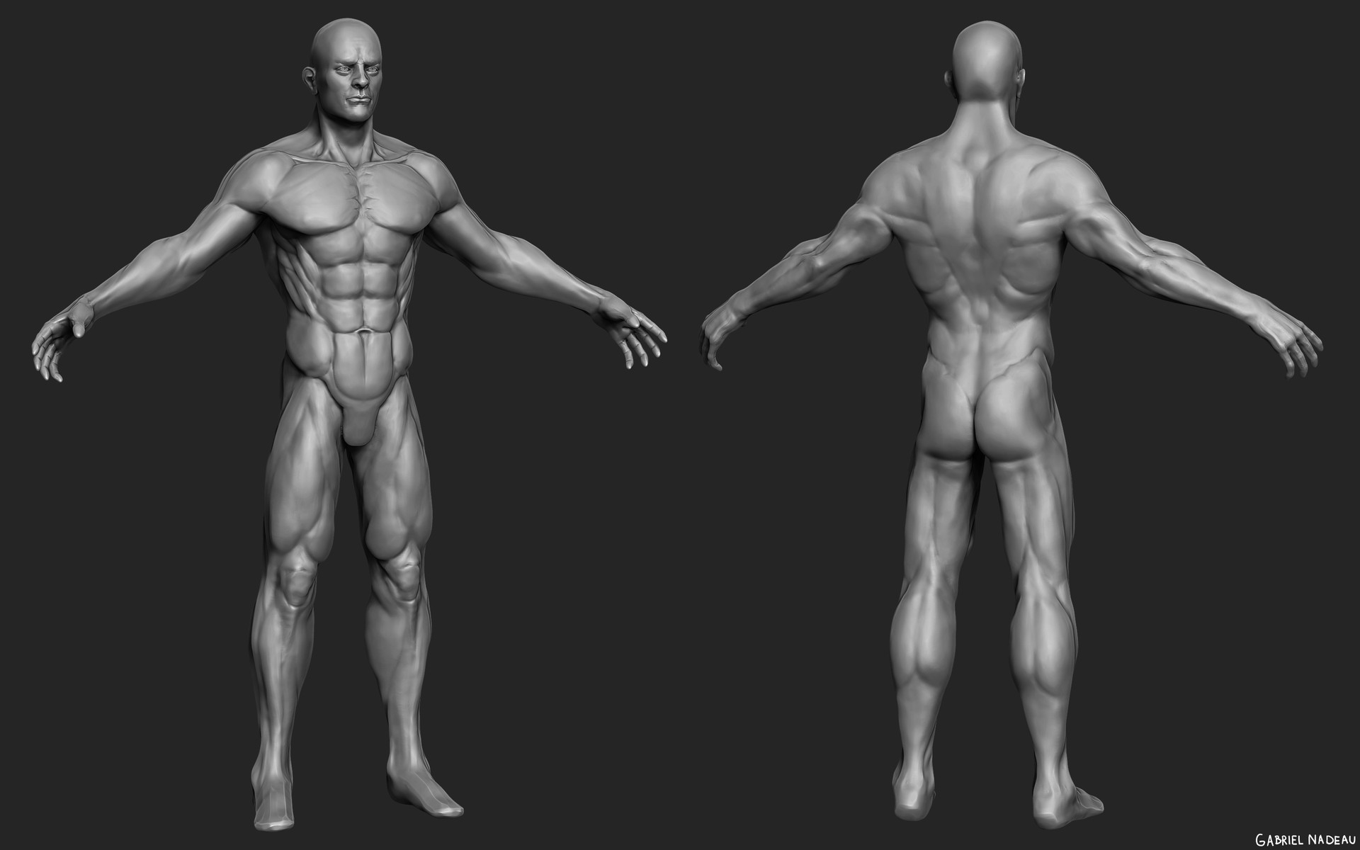 Gabriel nadeau prisonnier anatomie