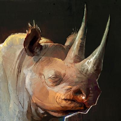Thierry doizon ae bt rhino 03 5