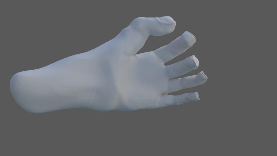 Peter buyken 31 hand
