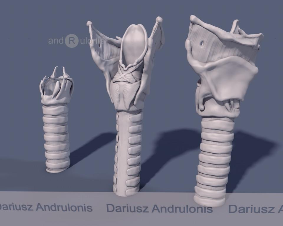 Dariusz andrulonis krtan